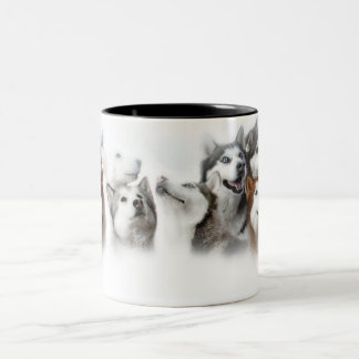 Siberian Husky Two-Tone Coffee Mug