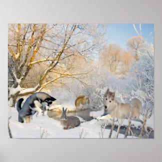 Siberian Husky Winter Fun With Friends Poster