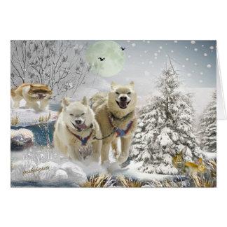 Siberian Husky Winter Scene Cards