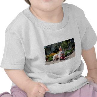 Siberian Husky Zoey 1 Tshirt