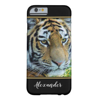 Siberian Tiger, Amur Tiger Barely There iPhone 6 Case