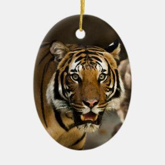 Siberian Tiger Ceramic Ornament