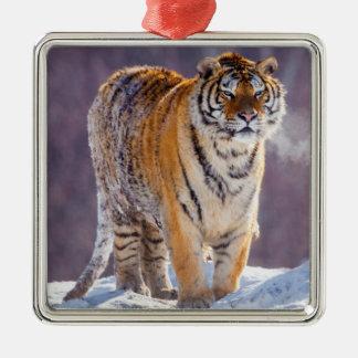 Siberian tiger in snow, China Metal Ornament