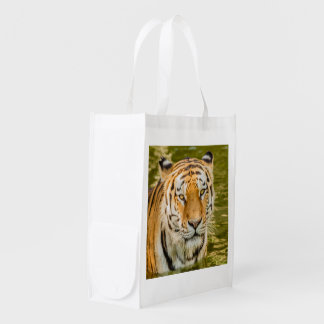 SIBERIAN TIGER ON REUSABLE BAG
