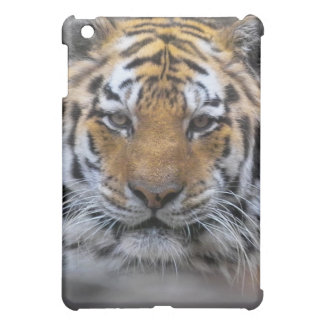 Siberian Tiger Photograph iPad Mini Cover