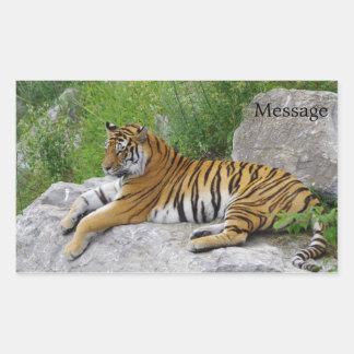 Siberian Tiger Relaxing on a Rock Rectangular Sticker