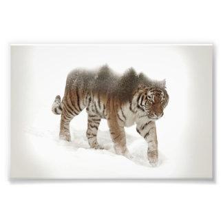 Siberian tiger-Tiger-double exposure-wildlife Photo Print