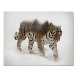 Siberian tiger-Tiger-double exposure-wildlife Poster