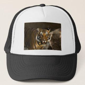 Siberian Tiger Trucker Hat