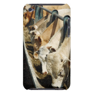 Sicily, Italy iPod Touch Case