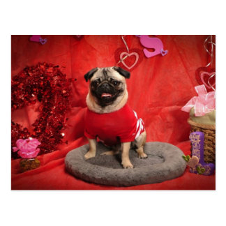 Sid or Dandy Valentine Photo Tees and Gifts Postcard