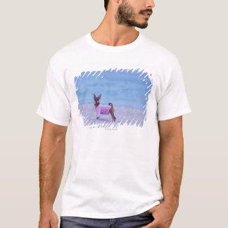 Side profile of a dog standing on the beach, T-Shirt