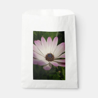Side View of A Pink and White Osteospermum Favour Bag
