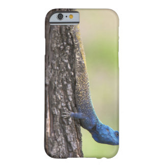 Side view of a Tree Agama (Acanthocerus Barely There iPhone 6 Case