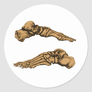 Side view of bones of the feet - sepia round stickers