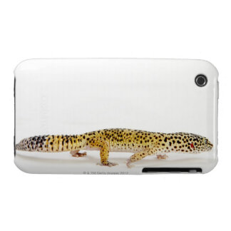 Side view of leopard gecko lizard iPhone 3 cover