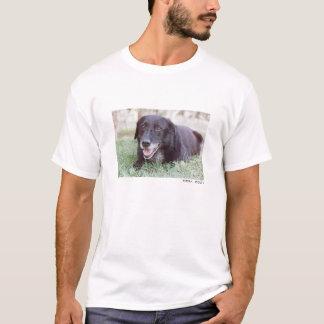 Sidra T-Shirt