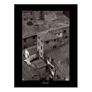 Siena Rooftops | Postcard