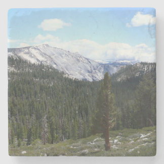 Sierra Nevada Mountains II from Yosemite Stone Coaster