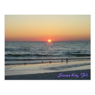 Siesta Key Florida Sunset Postcard