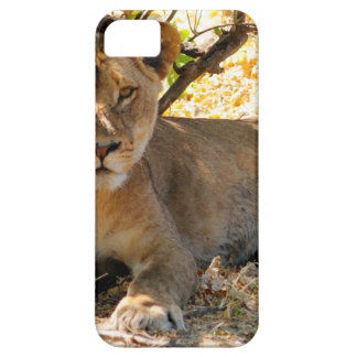 Siesta Time Case For The iPhone 5