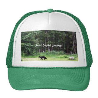 Sight- Seeing Black Bear Cap