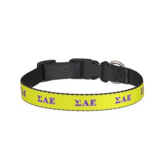 Sigma Alpha Epsilon Purple Letters Pet Collar
