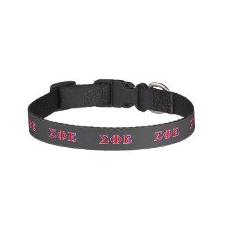 Sigma Phi Epsilon Purple and Red Letters Pet Collar