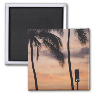 Signal and Palm Tree Refrigerator Magnet