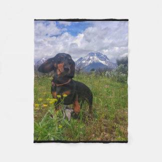 Signal Mountain Fleece Blanket