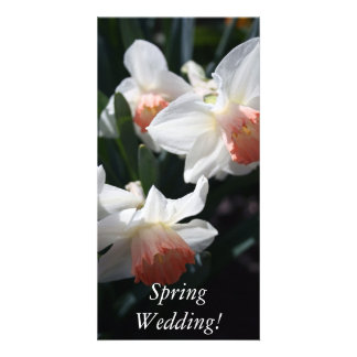 Signs Of Spring Personalized Photo Card