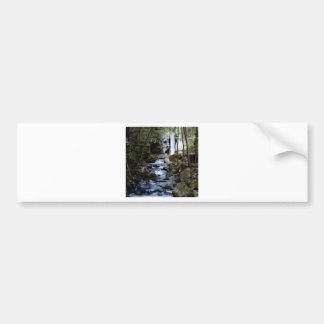 silent stream in forest bumper sticker