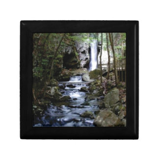 silent stream in forest gift box