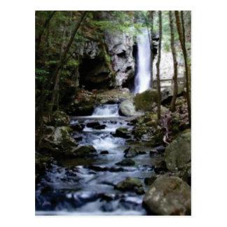 silent stream in forest postcard