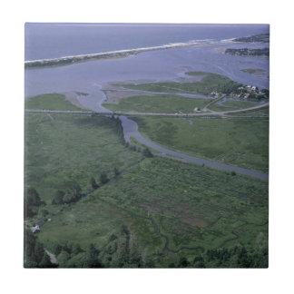 Siletz Bay National Park Small Square Tile