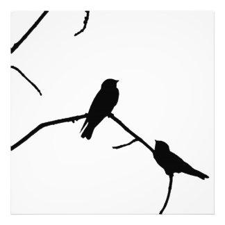 Silhouette Black White Swallow Pair Photo Art