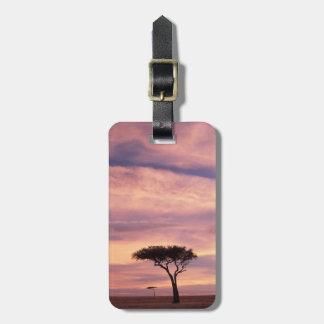 Silhouette image of acacia tree at sunrise luggage tag