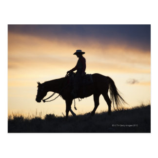 Silhouette of a Cowgirl on her horse against the Postcard