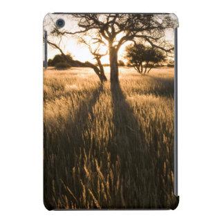 Silhouette Of Acacia Trees In Grass. Mariental iPad Mini Covers