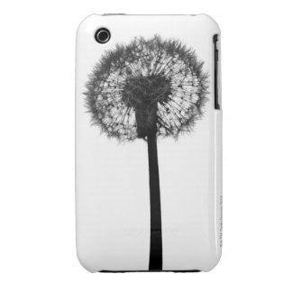 Silhouette of dandelion iPhone 3 Case-Mate case