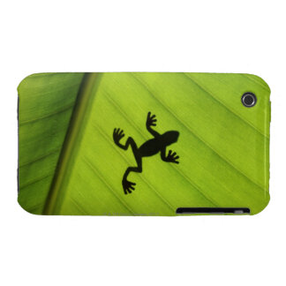 Silhouette of frog through banana leaf iPhone 3 cover
