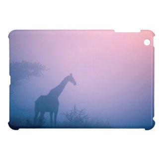 Silhouette Of Giraffe (Giraffa Camelopardalis) iPad Mini Cases
