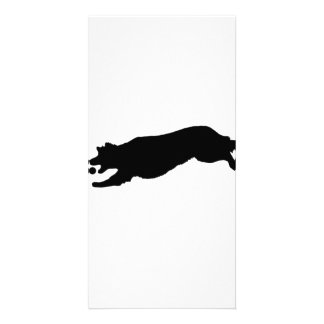 Silhouette of Golden Retriever Dog Fetching Ball Personalized Photo Card