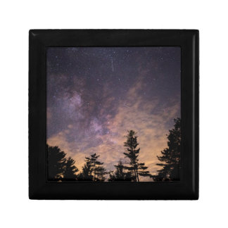 Silhouette of Trees at Night Gift Box