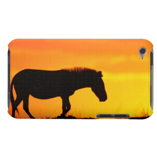 Silhouette of zebra on savanna barely there iPod covers