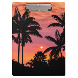 Silhouetted palm trees, Hawaii Clipboard