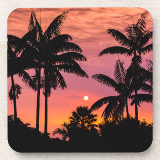 Silhouetted palm trees, Hawaii Coaster