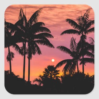 Silhouetted palm trees, Hawaii Square Sticker