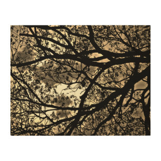 Silhouetted tree branches wood print