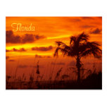 Silhouettes of Florida Post Cards
